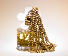 Free Perfume And Jewerly Royalty Free Stock Photography - 5293107