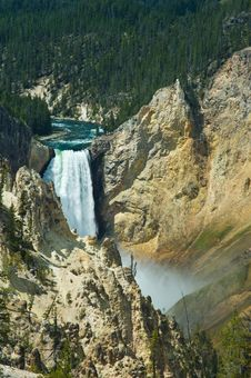Free Lower Yellowstone Falls Royalty Free Stock Image - 5293256