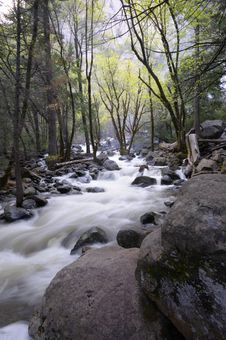 Secluded Cascade In Yosemite In Spring Stock Photo
