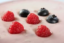 Free Berry Stock Images - 5295524