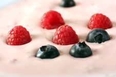 Free Berry Royalty Free Stock Images - 5295559