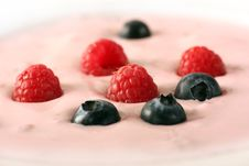 Free Berry Royalty Free Stock Images - 5295579