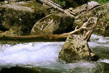 Free Waterfall Royalty Free Stock Photos - 5295628
