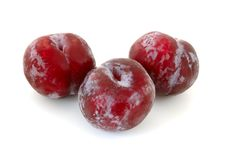 Three Plums. Stock Photography