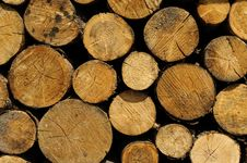 Free Stacked Logs Stock Images - 5296174