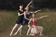 Free Outdoor Ballet Royalty Free Stock Photo - 5298585