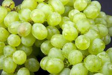 Free Grapes Royalty Free Stock Photo - 5299515