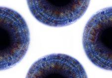 Free Eyes Stock Photography - 530022