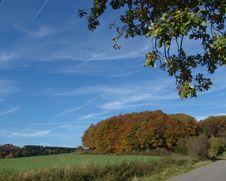 Free Palatine Autumn Royalty Free Stock Image - 531096