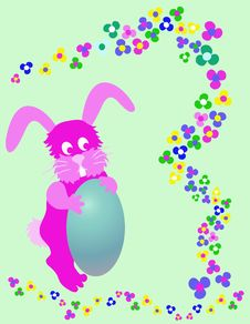 Free Bunny Stock Photography - 533312