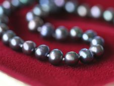 Black Pearl Necklace On Red Velvet Royalty Free Stock Photo