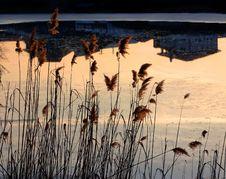 Free Reflections Stock Photo - 535620
