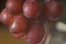 Free Juicy Grapes In Macro Royalty Free Stock Image - 535626
