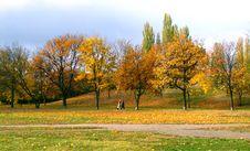 Free Autumn Stock Image - 537711