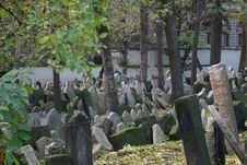 Free Jewish Graveyard Stock Photos - 538253