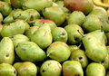 Free Pears Royalty Free Stock Photo - 5305635