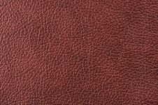 Free Natural Leather Texture Stock Photo - 5300440