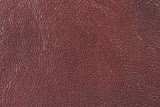 Free Natural Leather Texture Stock Image - 5300501