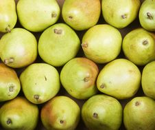 Free Pears Royalty Free Stock Images - 5300899