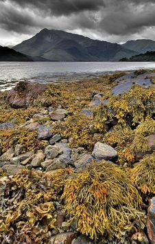 Free Loch Leven,Scotland Stock Photography - 5300932