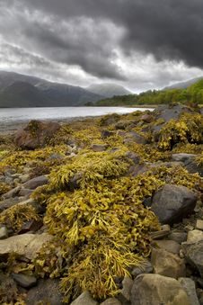 Free Loch Leven,Scotland Royalty Free Stock Photography - 5300937