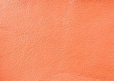 Free Natural Leather Texture Royalty Free Stock Photo - 5300955