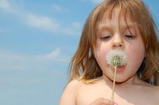 Free Blowing A Dandelion Royalty Free Stock Image - 5301306