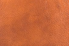 Free Natural Leather Texture Royalty Free Stock Image - 5301356