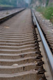 Free Straight Tracks Stock Photography - 5302062