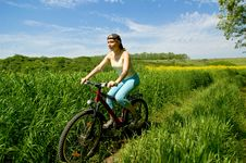 Free Girl Biking Royalty Free Stock Photo - 5302985