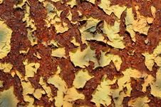 Free Peeling Grunge Paint Stock Images - 5303824