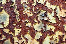 Free Peeling Grunge Paint Royalty Free Stock Image - 5303846