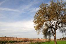 Free Serene Stock Images - 5304084