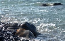 Free Seashore With Stones During Surf. Royalty Free Stock Image - 5304876