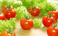 Free Fresh Salad With Tomatoes Royalty Free Stock Images - 5304899