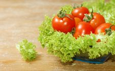 Free Fresh Salad With Tomatoes Stock Photography - 5304902