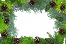 Christmas Frame With Cones Royalty Free Stock Images
