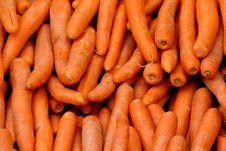 Free Carrots Royalty Free Stock Photos - 5306588