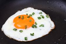 Free Egg On Pan Royalty Free Stock Photos - 5307258