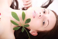 Free Green Spa Royalty Free Stock Photo - 5307645