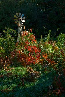 Free Garden Windmill Stock Photos - 5309123