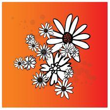 Free Flower Red Splash Stock Images - 5309684