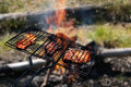 Free Grill Stock Images - 5316594