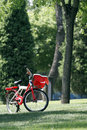 Free Bicycle In The Woods. Stock Image - 5318231