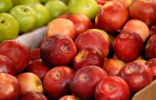 Free Apples Royalty Free Stock Photography - 5311777