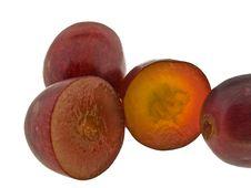 Free Red Grape Macro Royalty Free Stock Photo - 5311815