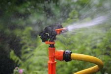 Free Sprinkler. Stock Photo - 5312100