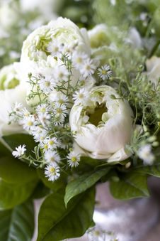 Free Flowers Stock Photography - 5312112