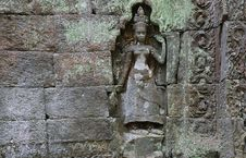 Free Cambodia; Angkor; Ta Prohm Temple: Apsaras Stock Image - 5313031