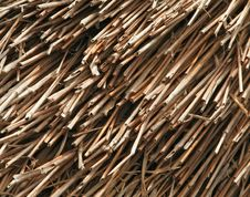 Free Reed Thatch Detail Royalty Free Stock Photo - 5314825